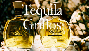 Interview with Tequila Grillos