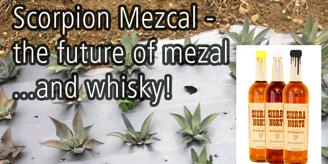 scorpionmezcal interview with Douglas French